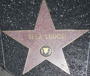 Bela Lugosi star on HWF