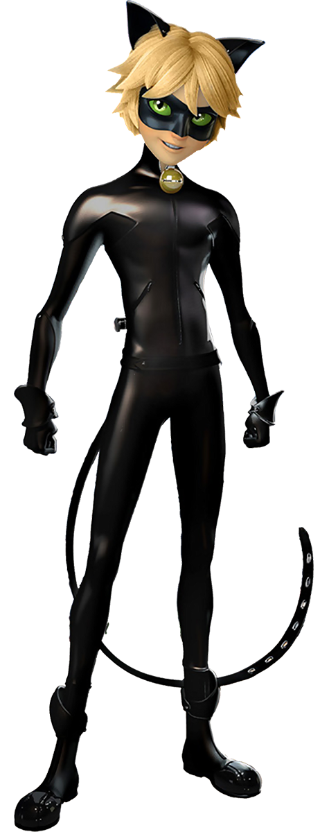 Attractive Cat Noir
