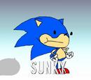 Sunky the Hedgehog