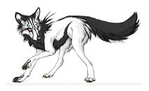 Wolf - 8
