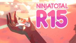 NinjaTotalR15 (Tarde)