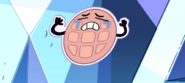 WarpTour waffle1
