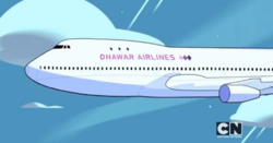 Dhawar airlines-plane
