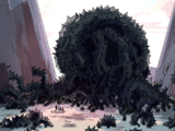Arbustos espinosos