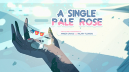 A Single Pale Rose