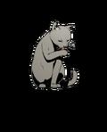 AynN1 Cat