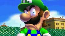 Luigi Death Stare Meme