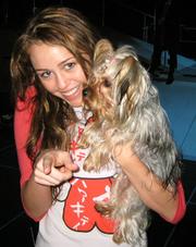 220px-Mileydog