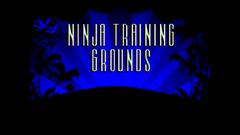 Ninja Trining Ground