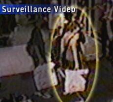 Sneha surveillance