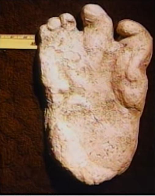 Yeti4 footprint