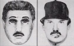 New york serial rapist1 sketch