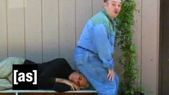 I Sit On You Tim and Eric Awesome Show, Great Job! Adult Swim
