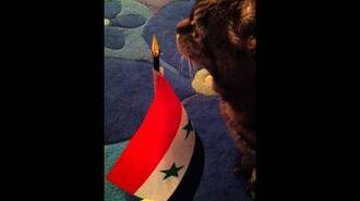 Patriotic Syrian Cat