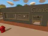 Guns Store