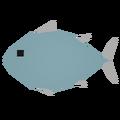 Tuna Raw 6626