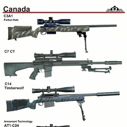 Distintos modelos del Timberwolf