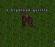HighlandGorilla