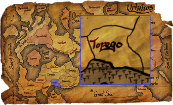 Topego map copy