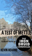http://www.kevinhearne.com/wp-content/uploads/2010/12/A-Test-of-Mettle