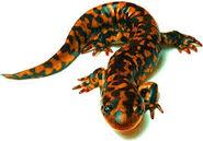 Sparky the salamander familiar, Sidekick