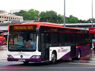 SBS Transit Mercedese Citaro 2011