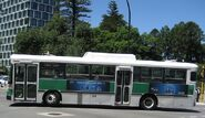 Old Perth bus