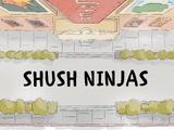 Ninjas do Silêncio