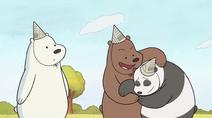 Ursos sem Curso