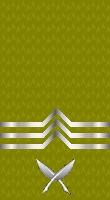 Sleeve gold yeoman 1
