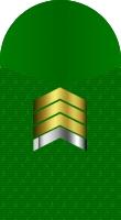 Sleeve marine gunnery sergeant