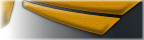 Uniformblack-yellow.png