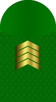 Sleeve marine master sergeant