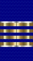 File:Sleeve blue fleet captain.jpg