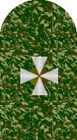 Sleeve cadet camo 1