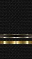 File:Sleeve black lt jg.jpg