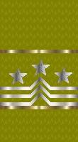 Sleeve gold senior cpo sf