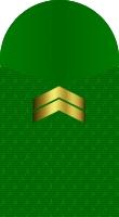 Sleeve marine corporal