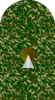 Sleeve cadet camo 4