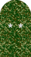 Sleeve camo major general