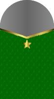 Sleeve marine brigadier general