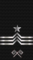 Sleeve black chief signalman