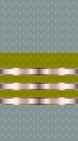 File:Sleeve cadet gold 2.jpg