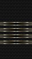 File:Sleeve black master wo.jpg