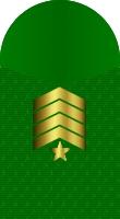 Sleeve marine sergeant major sfmc