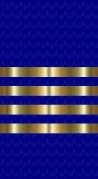 File:Sleeve blue captain.jpg