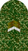 Sleeve camo sergeant