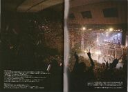 MAJILOVELIVE1000BROCHURE-20