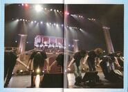 MAJILOVELIVE1000BROCHURE-19