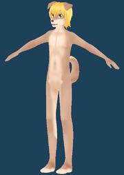 Body markings